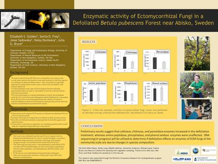 Ectomycorrhizal fungi (ECM) form a mutualistic association with woody plant species and transfer water and nutrients to the host species in exchange for.