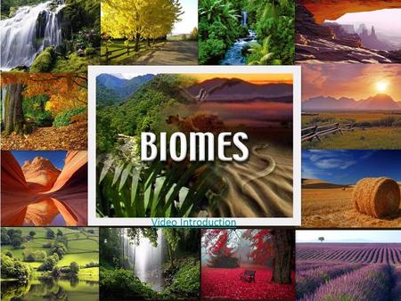Video Introduction. Lesson Essential Questions What are the major biomes in the world? What factors are used to classify biomes? How does an organism's.