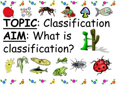 TOPIC: Classification AIM: What is classification?