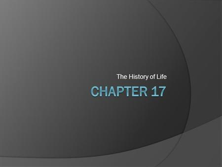 The History of Life. Spontaneous Generation  The belief that life arose from non-living things.  As scientific thinking progressed through the ages,
