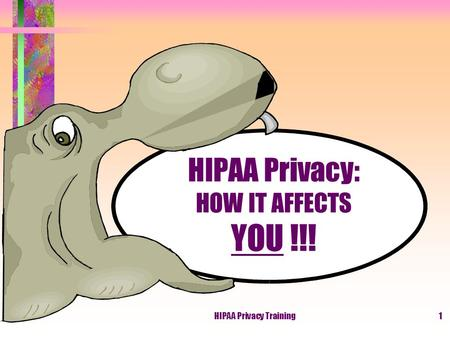 HIPAA Privacy Training1 HIPAA Privacy: HOW IT AFFECTS YOU !!!