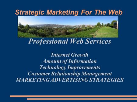 Strategic Marketing For The Web Professional Web Services Internet Growth Amount of Information Technology Improvements Customer Relationship Management.