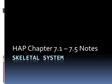 HAP Chapter 7.1 – 7.5 Notes. I. Introduction A. Living…not dead B. Functions… 1. structure 2. attachment for muscles 3. protection 4. produce blood cells.