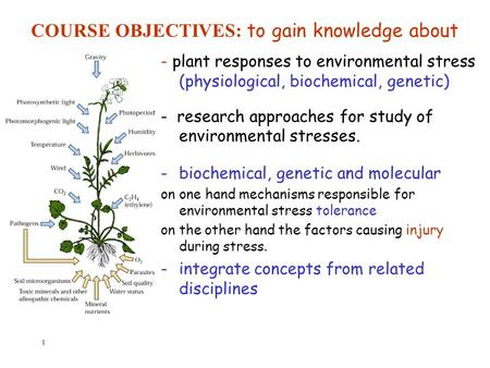 1 - plant responses to environmental stress (physiological, biochemical, genetic) - research approaches for study of environmental stresses. -biochemical,