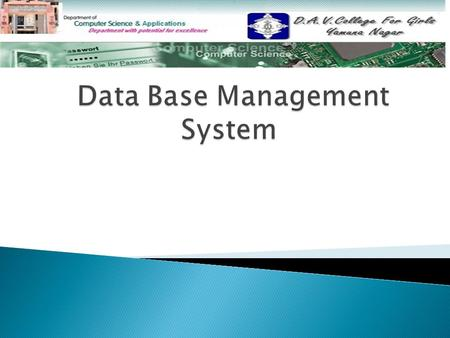  DATABASE DATABASE  DATABASE ENVIRONMENT DATABASE ENVIRONMENT  WHY STUDY DATABASE WHY STUDY DATABASE  DBMS & ITS FUNCTIONS DBMS & ITS FUNCTIONS 