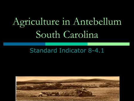 Agriculture in Antebellum South Carolina Standard Indicator 8-4.1.