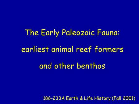 The Early Paleozoic Fauna: earliest animal reef formers