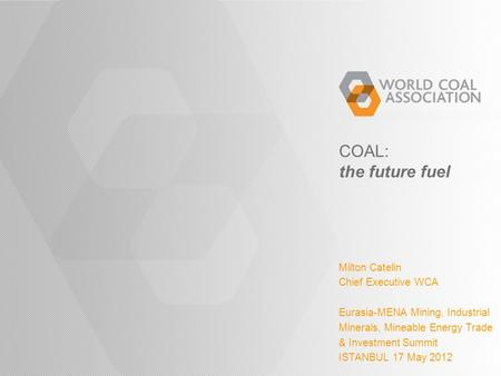 COAL: the future fuel Milton Catelin Chief Executive WCA Eurasia-MENA Mining, Industrial Minerals, Mineable Energy Trade & Investment Summit ISTANBUL 17.
