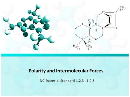 Polarity and Intermolecular Forces NC Essential Standard 1.2.3, 1.2.5.