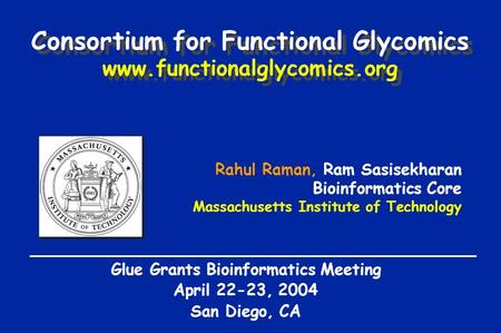 Rahul Raman, Ram Sasisekharan Bioinformatics Core Massachusetts Institute of Technology Glue Grants Bioinformatics Meeting April 22-23, 2004 San Diego,