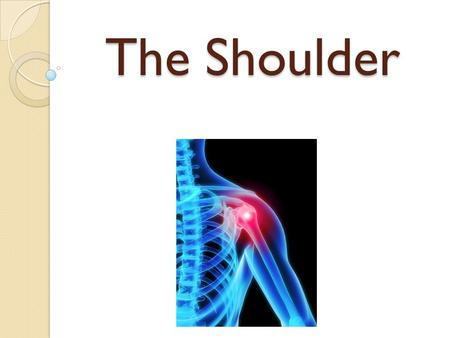 The Shoulder. Shoulder Girdle Complex Glenohumeral joint Acromioclavicular joint Scapulothoracic joint.