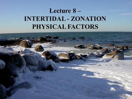 Lecture 8 – INTERTIDAL - ZONATION PHYSICAL FACTORS.