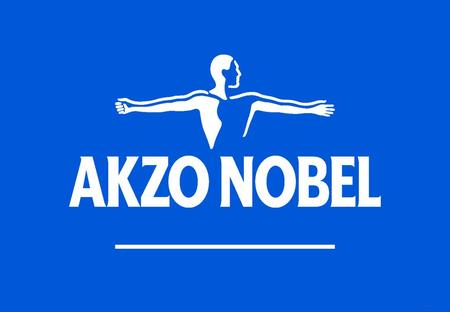 HWNEY2004 1. HWNEY2004 2 Safe harbor statement* This report contains statements which address such key issues as Akzo Nobel's growth strategy, future.