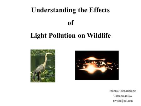 Johnny Noles, Biologist Chesapeake Bay Understanding the Effects of Light Pollution on <strong>Wildlife</strong>.