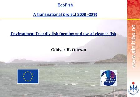 OMJ-98 1 EcoFish A transnational project 2008 -2010 Environment friendly fish farming and use of cleaner fish Oddvar H. Ottesen.