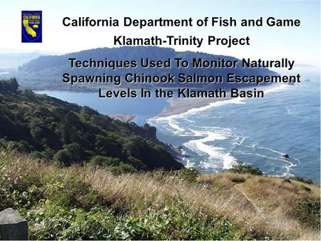 California Department of Fish and Game Klamath-Trinity Project Techniques Used To Monitor Naturally Spawning Chinook Salmon Escapement Levels In the Klamath.