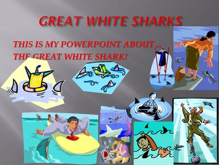 GREAT WHITE SHARKS THIS IS MY POWERPOINT ABOUT… THE GREAT WHITE SHARK!