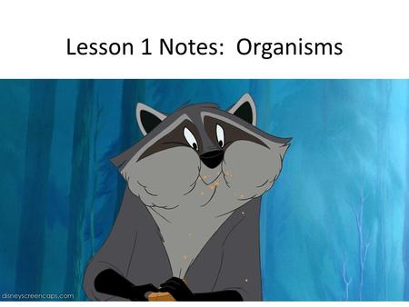 Lesson 1 Notes: Organisms. An organism is a living thing. In order to be living you must: – Grow – Reproduce – Respond to the environment – Be made up.