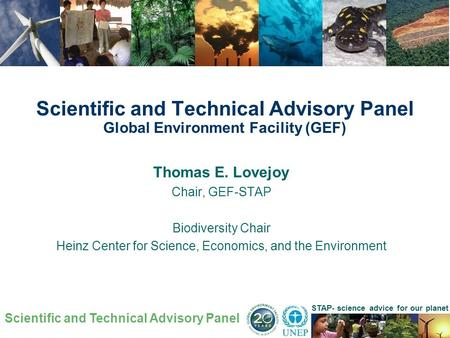 Scientific and Technical Advisory Panel STAP- science advice for our planet Thomas E. Lovejoy Chair, GEF-STAP Biodiversity Chair Heinz Center for Science,