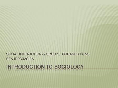 SOCIAL INTERACTION & GROUPS, ORGANIZATIONS, BEAURACRACIES.