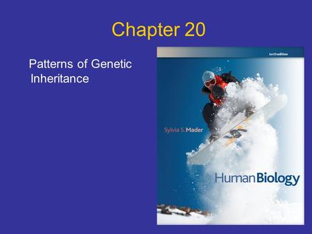 Chapter 20 Patterns of Genetic Inheritance. Points to Ponder What is the genotype and the phenotype of an individual? What are the genotypes for a homozygous.