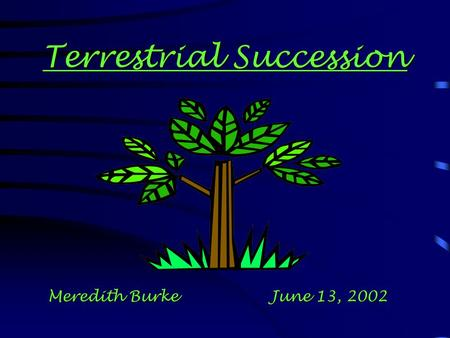 Terrestrial Succession Meredith Burke June 13, 2002.
