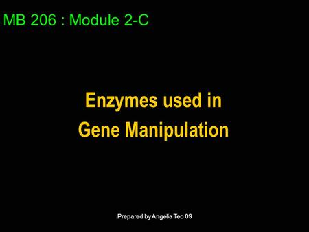 MB 206 : Module 2-C Enzymes used in Gene Manipulation Prepared by Angelia Teo 09.
