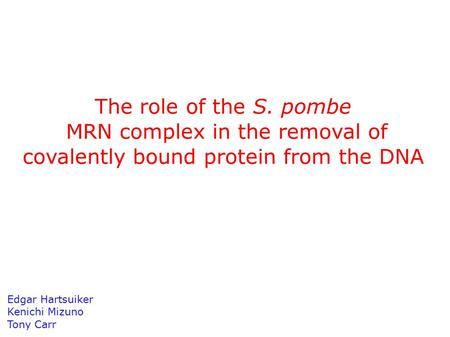 The role of the S. pombe MRN complex in the removal of covalently bound protein from the DNA Edgar Hartsuiker Kenichi Mizuno Tony Carr.