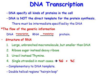 - DNA specify all kinds of proteins in the cell - DNA is NOT the direct template for the protein synthesis. There must be intermediate specified by the.