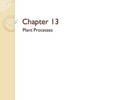 Chapter 13 Plant Processes.