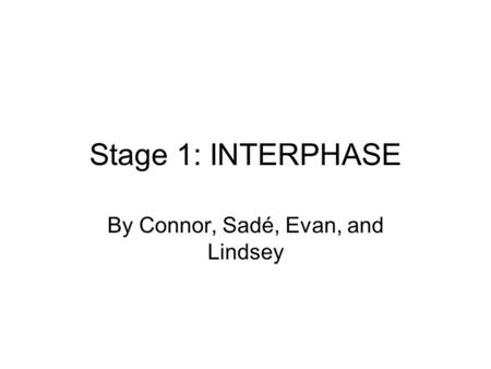 Stage 1: INTERPHASE By Connor, Sadé, Evan, and Lindsey.