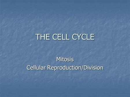 THE CELL CYCLE Mitosis Cellular Reproduction/Division.