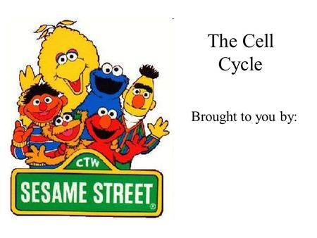 The Cell Cycle Brought to you by:. Today's Lesson Is brought to you by the letter C And the numbers 23 and 46.