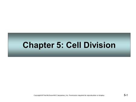 5-1 Chapter 5: Cell Division. 5-2 Cell Increase and Decrease Cell division increases the number of somatic (body) cells, and consists of: Mitosis (division.