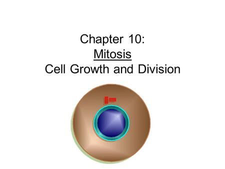"Chapter 10: Mitosis Cell Growth and Division. Cell Division Cell Division – cell divides into two new IDENTICAL ""daughter cells"" Mitosis – division of."