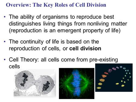 Overview: The Key Roles of Cell Division The ability of organisms to reproduce best distinguishes living things from nonliving matter (reproduction is.