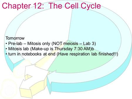 Chapter 12: The Cell Cycle Tomorrow Pre-lab – Mitosis only (NOT meiosis – Lab 3) Mitosis lab (Make-up is Thursday 7:30 AM)b turn in notebooks at end (Have.