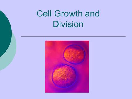 Cell Growth and Division Cell division – when a cell produces two new daughter cells Cell division is …  the process that allows young organisms to.