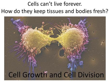 Cells can't live forever. How do they keep tissues and bodies fresh? Cell Growth and Cell Division.