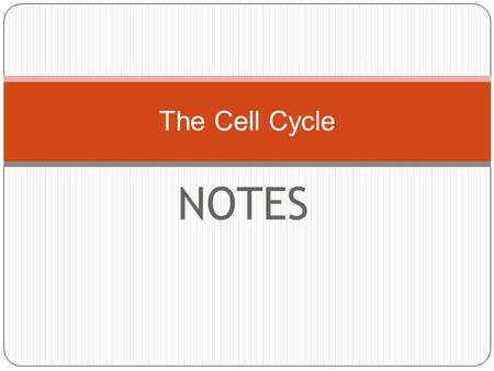 NOTES The Cell Cycle. Today's agenda: Review cancer Review Mitosis DNA worksheet Work from book: page 165 = Homework (or finish in class)