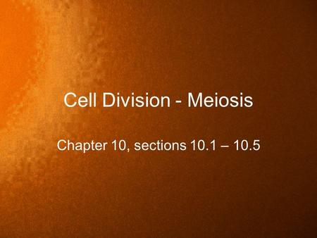 Cell Division - Meiosis Chapter 10, sections 10.1 – 10.5.