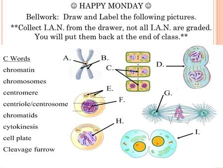 HAPPY MONDAY Bellwork: Draw and Label the following pictures. **Collect I.A.N. from the drawer, not all I.A.N. are graded. You will put them back at the.