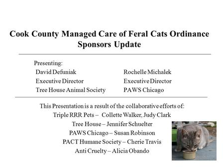 Cook County Managed Care of Feral Cats Ordinance Sponsors Update Presenting: David Defuniak Rochelle Michalek Executive DirectorExecutive Director Tree.