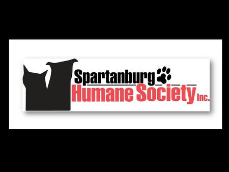 DID YOU KNOW? Every single day the Spartanburg Humane Society cares for nearly 400 animals.