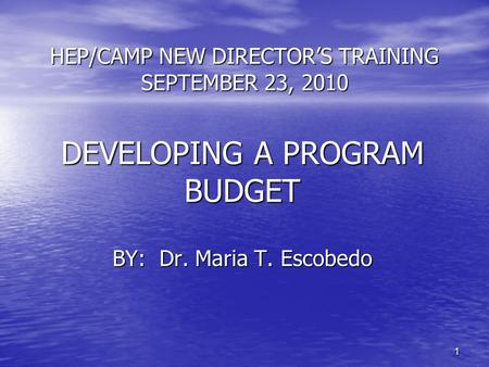 11 HEP/CAMP NEW DIRECTOR'S TRAINING SEPTEMBER 23, 2010 DEVELOPING A PROGRAM BUDGET BY: Dr. Maria T. Escobedo.