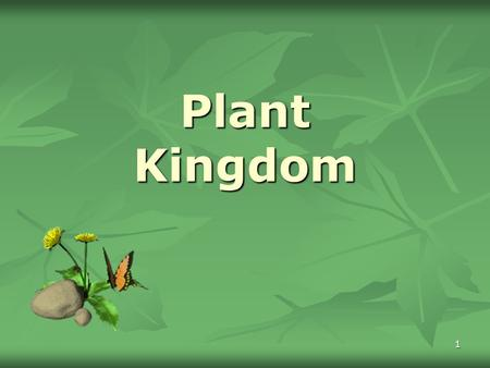 1 Plant Kingdom. 2 Plant Adaptations to Land Problems: Need minerals Need minerals Gravity Gravity Increase in Height for Light Increase in Height for.
