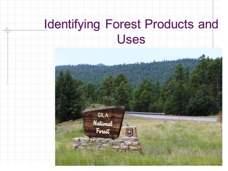 Identifying Forest Products and Uses. Next Generation Science/Common Core Standards Addressed! HSS ‐ IC.A.1 Understand statistics as a process for making.