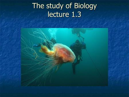 The study of Biology lecture 1.3. Science as a process Uses an organized approach to learn how the natural world works. Uses an organized approach to.