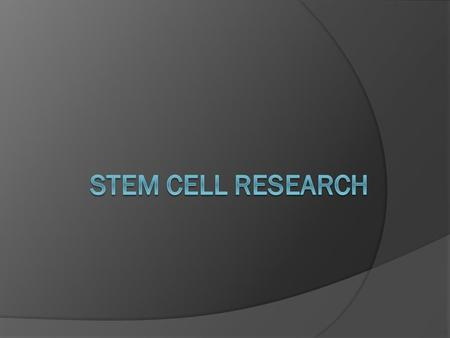 Stem Cells Stem cells are immature cells that have not turned into specific cells yet; they haven't become blood or skin, or anything else Stem cells.