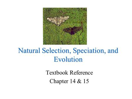 Natural Selection, Speciation, and Evolution Textbook Reference Chapter 14 & 15.